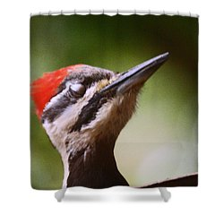 Eye Am Getting Very Sleepy Shower Curtain by Kym Backland