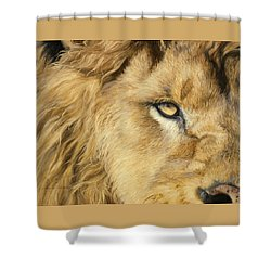 Eye Of The Lion Shower Curtain