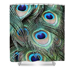 Shower Curtain featuring the photograph Eye Of The Peacock #2 by Judy Whitton