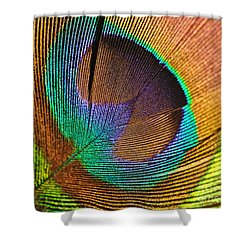 Eye Of The Peacock Shower Curtain