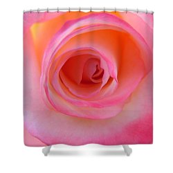 Shower Curtain featuring the photograph Eye Of The Rose by Deb Halloran