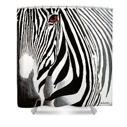 Eye Of The Zebra Shower Curtain by Mike Robles