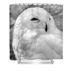 Eye On You Shower Curtain