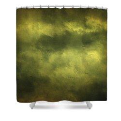 Eye Xix Shower Curtain by Taylan Apukovska