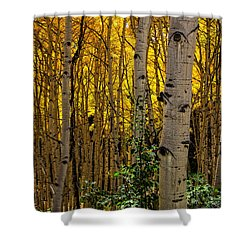 Shower Curtain featuring the photograph Eyes Of The Forest by Ken Smith