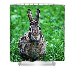 Shower Curtain featuring the photograph Eyes Wide Open by Trina  Ansel