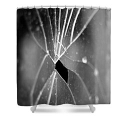 Shower Curtain featuring the photograph F1.4 by Brian Duram