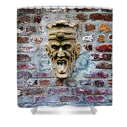 Face Fountain In Pirates Courtyard Shower Curtain