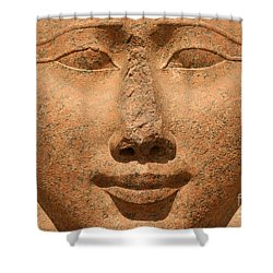 Face Of Hathor Shower Curtain by Stephen & Donna O'Meara