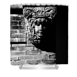 Face Of Stone Shower Curtain by Karol Livote