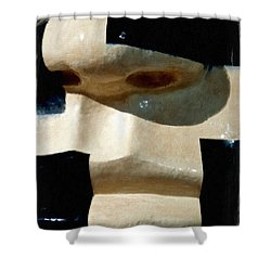 Shower Curtain featuring the painting Face On by Joan Reese