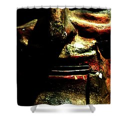 Shower Curtain featuring the photograph Face Time by Newel Hunter