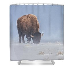 Shower Curtain featuring the photograph Faces The Blizzard by Jack Bell