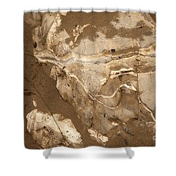 Facing The Past Shower Curtain by Amanda Barcon