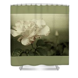 Shower Curtain featuring the photograph Faded Rose by Mary Wolf