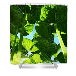 Faerie World Shower Curtain