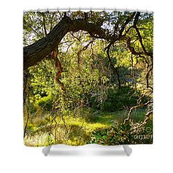 Fairies' Den Shower Curtain