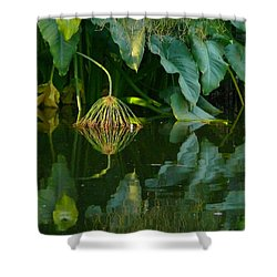 Shower Curtain featuring the photograph Fairy Pond by Evelyn Tambour