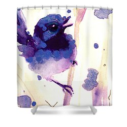 Fairy-wren Shower Curtain
