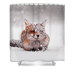 Fairytale Fox II Shower Curtain