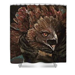Falcon Opera  Shower Curtain