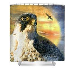 Falcon Sun Shower Curtain by Carol Cavalaris