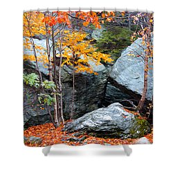 Fall Among The Rocks Shower Curtain by Bill Howard
