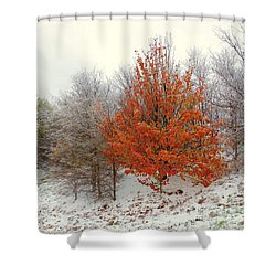 Fall And Winter Shower Curtain by Robert ONeil