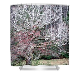 Fall At Cades Cove Shower Curtain