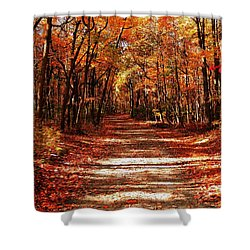 Fall At Cheesequake Shower Curtain