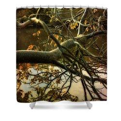 Fall At The Creek Shower Curtain by Ellen Heaverlo