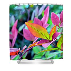 Fall Brilliance Shower Curtain