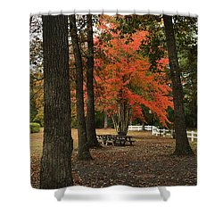 Fall Brings Changes  Shower Curtain