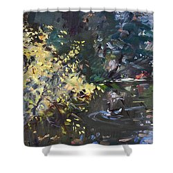 Fall By The Pond Shower Curtain