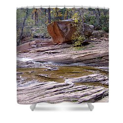 Fall Color 6419 Shower Curtain by En-Chuen Soo