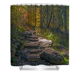 West Fork At Oak Creek Shower Curtain