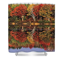 Shower Curtain featuring the photograph Fall Color Reflected In Thornton Lake Michigan by Dave Welling