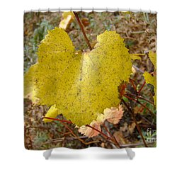 Fall Colors 6302 Shower Curtain by En-Chuen Soo