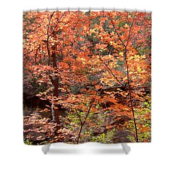 Fall Colors 6335 Shower Curtain by En-Chuen Soo