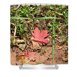 Fall Colors 6342 Shower Curtain by En-Chuen Soo
