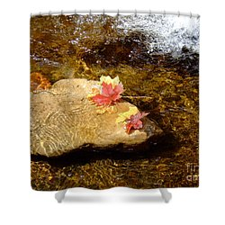 Fall Colors 6348 Shower Curtain by En-Chuen Soo