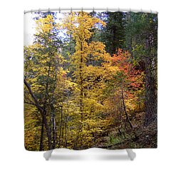 Fall Colors 6368 Shower Curtain by En-Chuen Soo