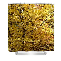 Fall Colors 6371 Shower Curtain by En-Chuen Soo