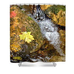 Fall Colors 6389 Shower Curtain by En-Chuen Soo