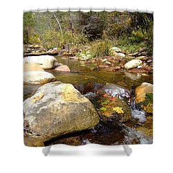 Fall Colors 6390 Shower Curtain