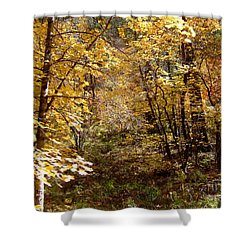 Fall Colors 6405 Shower Curtain