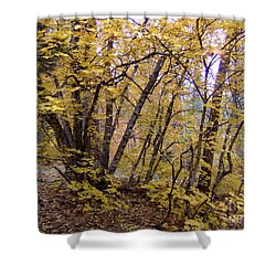 Fall Colors 6435 Shower Curtain