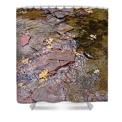 Fall Colors 6443 Shower Curtain