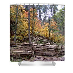 Fall Colors 6463-02 Shower Curtain by En-Chuen Soo