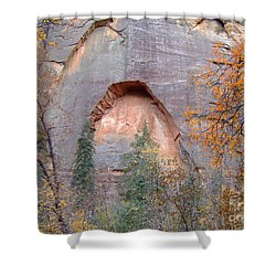 Fall Colors 6482 Shower Curtain